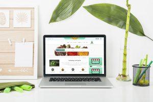 طراحی سایت مدی پلنت